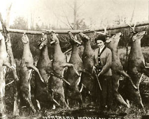 Vintage Deer Pole Picture. Something about girls and guns just works for me, know what I mean?