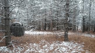 Wisconsin Crossbow Hunt 2017