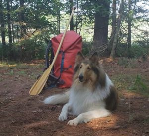 Lassie has nothing on Monty! Some would say Monty is the real star of Matthew Posa Adventures on YouTube.